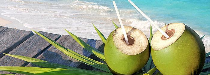 Cada coco tem em média de 200 a 1000 ml de água, dependendo do tamanho e da idade de cada fruto.