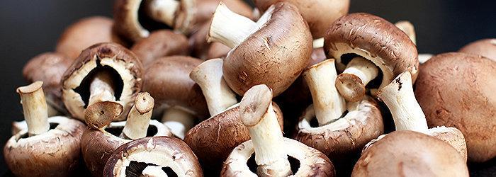 Shiitake, maitake e reishi. Esses são os tipos de cogumelos que contêm a maior quantidade de impulsionadores para o sistema imunológico
