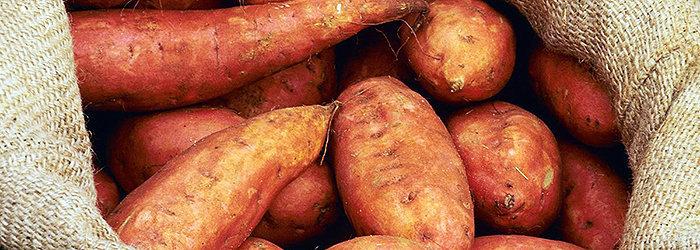 A batata doce é rica em vitaminas e minerais essenciais, que tratam tanto seu corpo quanto sua pele e cabelos