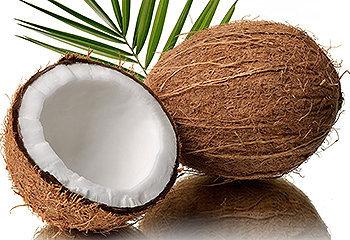 O interior da casca dura do coco contém uma carne branca e um leite, ambos são saborosos e nutritivos