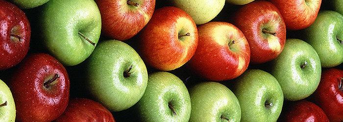 As maçãs são uma excelente fonte de antioxidantes, que combatem os radicais livres