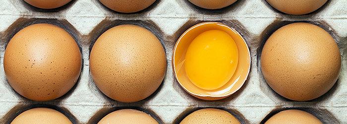 Além de gostoso, os ovos são um excelente alimento em termos nutricionais
