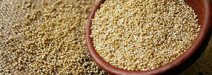 Os incas acreditavam que a quinoa era como