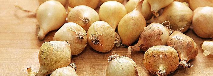 A cebola é rica em vitamina A, B1, B2, B3, C, cálcio, ferro, fósforo, magnésio, potássio, sódio e silício.
