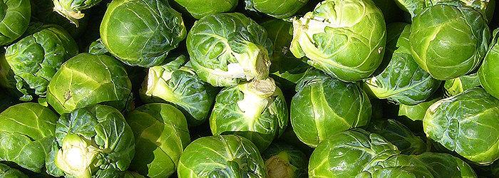 A couve de Bruxelas é um vegetal rico em fitonutrientes.