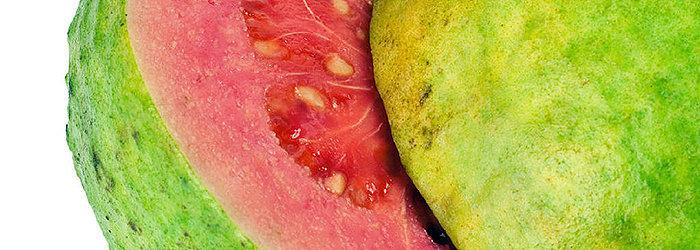 Nutrientes da goiaba, como a vitamina-C, carotenóides e o potássio, fortalecem e tonificam o sistema digestivo.