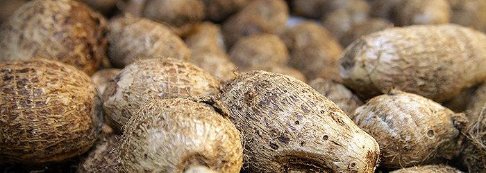 O inhame é rico em amido, quando cozido apresenta-se escorregadio, podendo ser cremoso ou firme, dependendo da variedade.