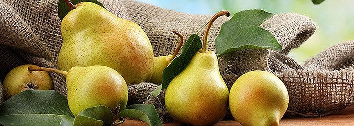A pera é uma fruta rica em vitaminas C, A e do complexo B e também uma poderosa fonte de antioxidantes e de outros nutrientes essenciais à boa saúde.
