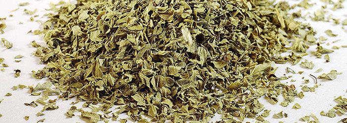 O orégano é um condimento aromático muito utilizado na cozinha europeia e que possui várias propriedades medicinais.