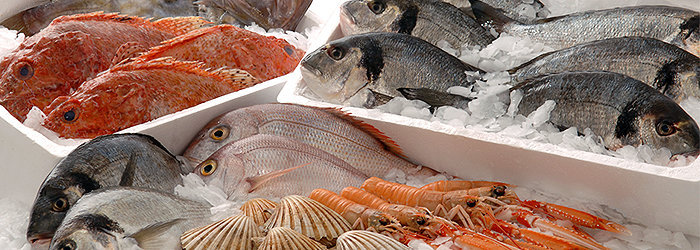 O peixe do mar têm maior quantidade de sódio e de iodo, que é um importante nutriente para o bom funcionamento da glândula tireoide.
