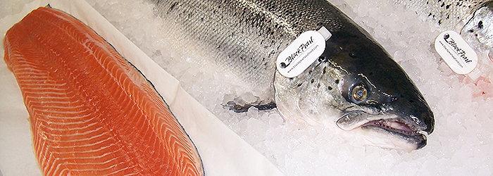 Peixes de água fria, como o salmão, são consideradas excelentes opções para a Dieta Nórdica.