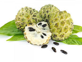 Todos os benefícios da Fruta do Conde à saúde