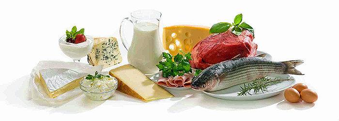 Dieta da Proteína Cardápio